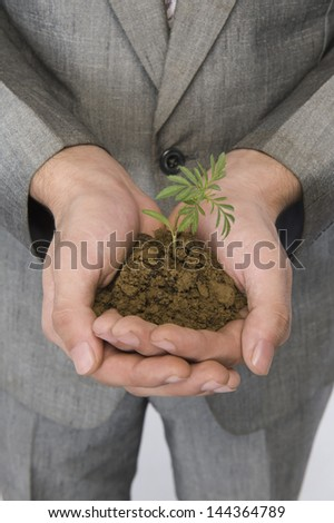 Businessman holding a sapling - stock photo