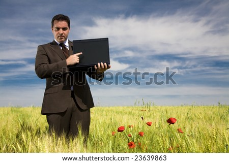 Businessman in a field pointing to a laptop - stock photo