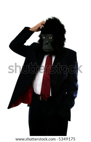 Businessman in a gorilla mask, confused and scratching his head. - stock photo