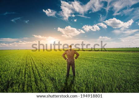 Businessman in a wheat field - stock photo