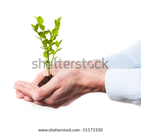 Businessman in blue shirt holding soil and a small plant, isolated on white background (growth and development concept) - stock photo