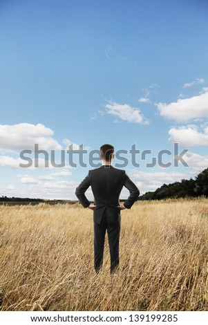 businessman looking in beautiful landscape