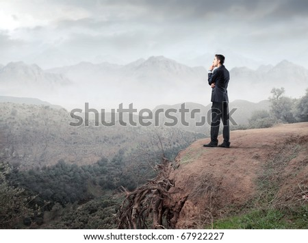 Businessman observing the landscape