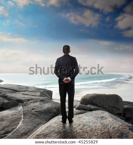 Businessman observing the seascape before him
