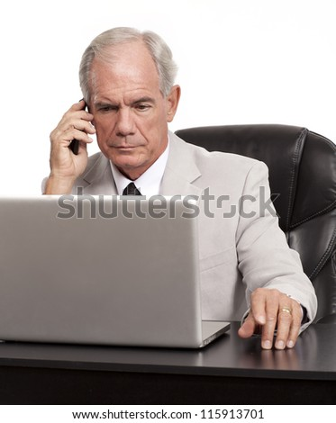 Businessman on the phone at his computer - stock photo
