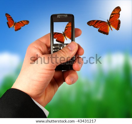 Businessman photographing butterflies from mobile phone - stock photo