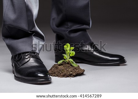Businessman standing near the young sprout, gray background