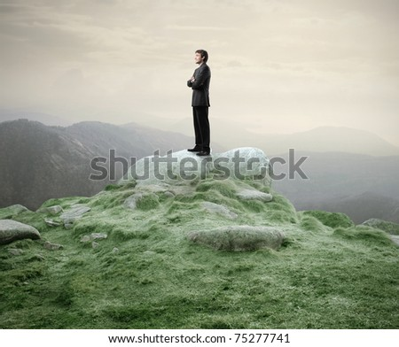 Businessman standing on a rock in the mountains - stock photo
