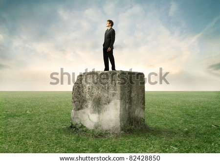 Businessman standing on a stone cube on a green meadow - stock photo