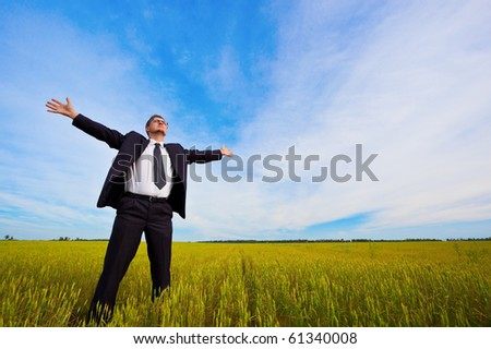 businessman standing on field - stock photo