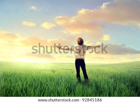 Businessman stretching out his arms on a green meadow - stock photo