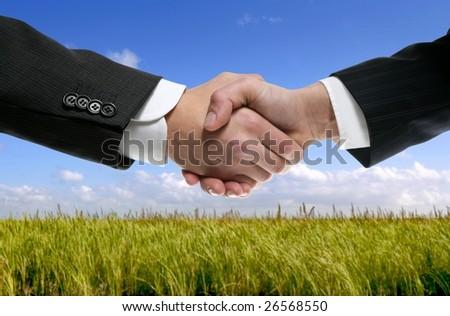 Businessman teamwork partners shaking hands in green nature [Photo Illustration] - stock photo