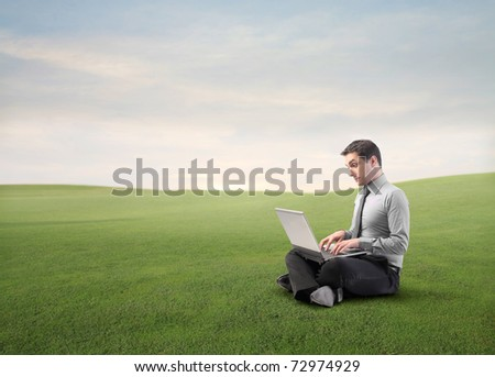 Businessman using a laptop on a green meadow - stock photo