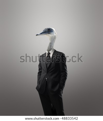 Businessman with a bird's head instead of his human head - stock photo
