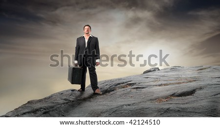 businessman with suitcase on high mountain