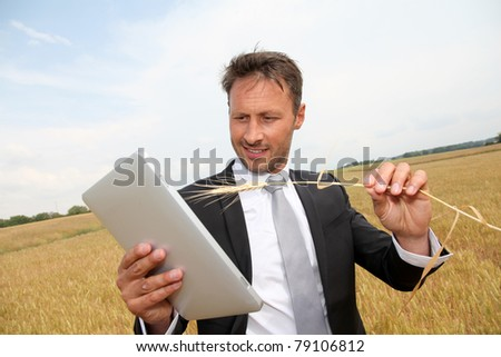 businessman working in wheat field - stock photo