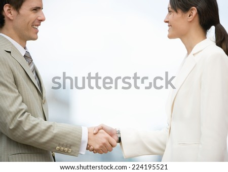 Businesswoman and man shaking hands - stock photo