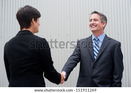 Businesswoman shaking hands with businessman - stock photo
