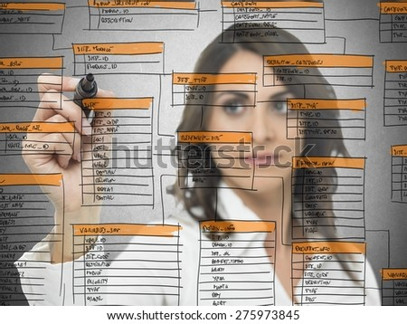 Businesswoman works on the database software development - stock photo
