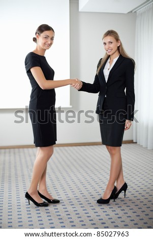 Businesswomen shaking hands - stock photo