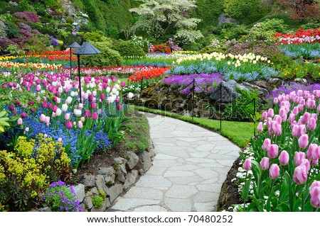 Flower Garden Path flower garden path stock images, royalty-free images & vectors
