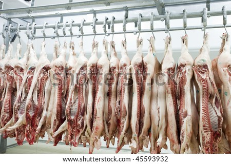 Butcher products. Processed pigs hanging in a slaughter house - stock photo