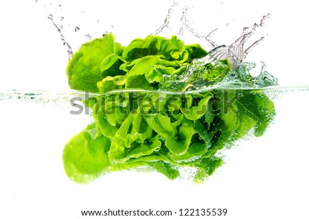 butter head lettuce falls under water with a splash. isolated on white background - stock photo