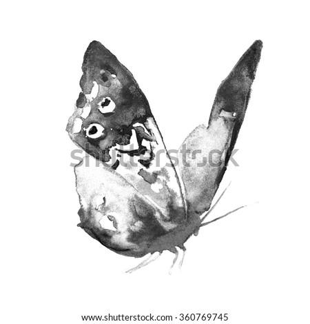 butterflies design - stock photo