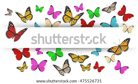 Butterflies flying with text space