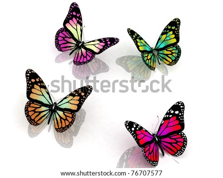 butterflies on a white background