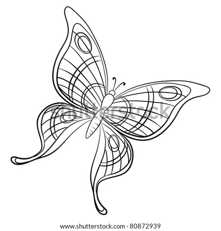 butterfly, hand-draw monochrome contours on a white background - stock photo