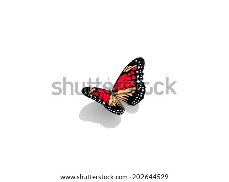 Butterfly isolated on white. 3d illustration. - stock photo