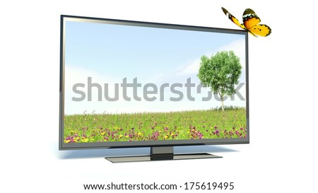 Butterfly on a TV, nature