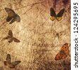 butterfly shabby wood grunge background - stock photo