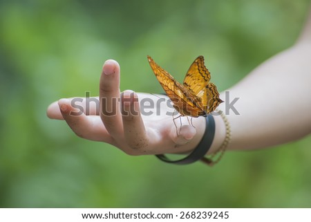 Butterfly sitting on woman's hand - stock photo