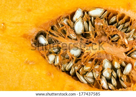 Butternut squash (Cucurbita moschata), also known in Australia and New Zealand as butternut pumpkin, is a type of winter squash