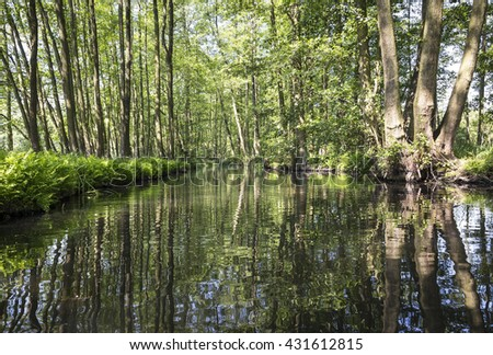 By canoe through the beautiful Spreewald, Lausitz, Germany. The Spreewald is a protected biosphere reserve. The Spree divides into many side arms. Typically the alders are along the canals and streams
