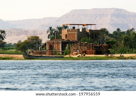 By the Nile - stock photo
