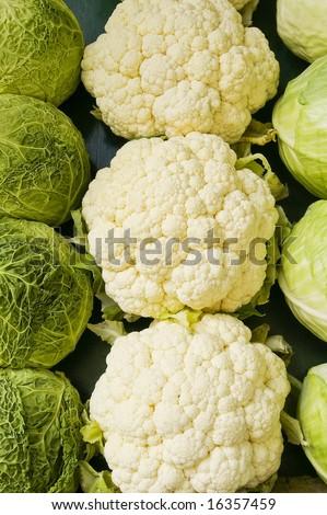 cabbage and cauliflower - stock photo