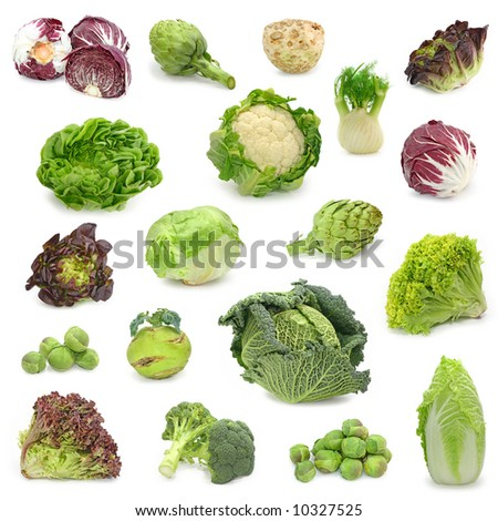 cabbage and green vegetable collection isolated on white background - stock photo