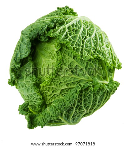 cabbage-head on the white background