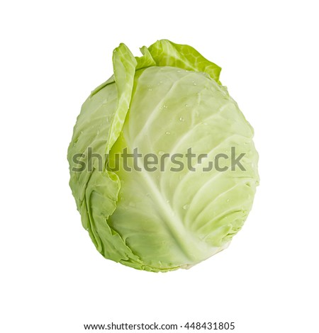 cabbage isolated on white background with clipping patch - stock photo