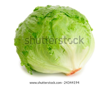 Cabbage lettuce isolated on white - stock photo