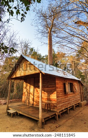 Cabin in the dry forest of Kirindy Mitea National Park, in Madagascar - stock photo