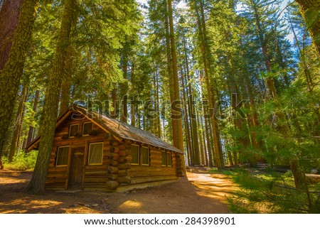 Cabin In The Woods, Yosemite National Park, California, USA. Mariposa Grove,