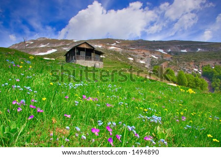 Cabin up in the mountains and a flower meadow in countryside Macedonia - stock photo