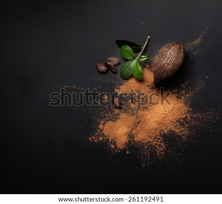Cacao beans and powder on black background - stock photo