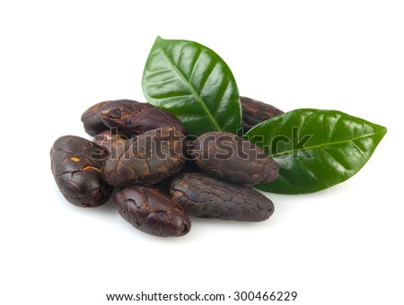 Cacao beans isolated on white background. - stock photo