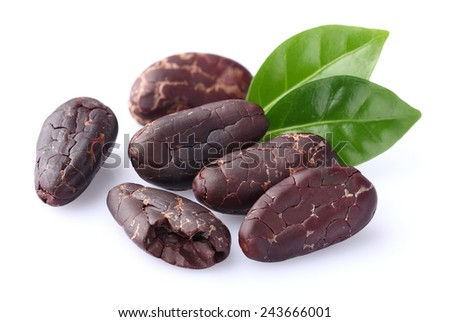 Cacao beans with leaves - stock photo