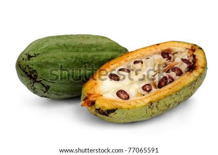 cacao fruits isolated against white background. - stock photo
